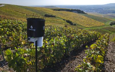 SENCROP s'associe au leader de la prévision météo agricole PLEINCHAMP.COM et au CREDIT AGRICOLE de CHAMPAGNE-BOURGOGNE