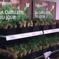 Auchan Retail Luxembourg_Lifestore La Cloche d'or (35)