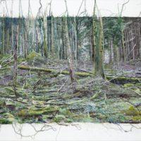 Fiber Art Fever- Isabel Bisson Mauduit_preview