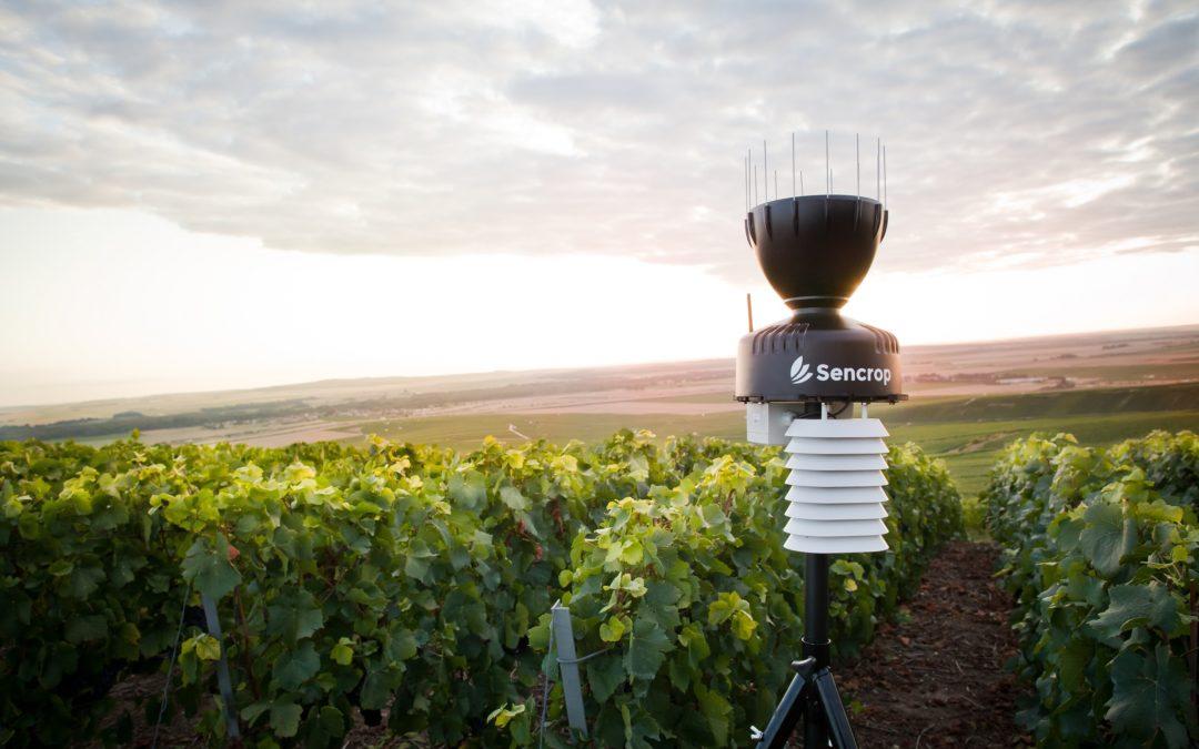 En équipant 80 viticulteurs dans le Médoc, Sencrop densifie le maillage de ses stations météo connectée en Nouvelle Aquitaine