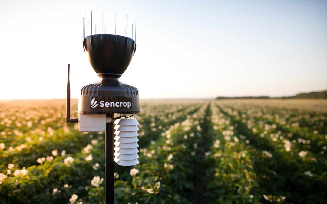 La coopérative agricole LORCA fait le pari d'une agriculture collaborative et installe un réseau de 60 stations agro-météo connectées sur son territoire