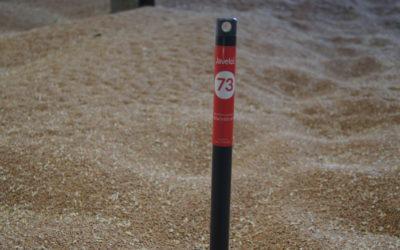 Avec sa solution de thermométrie connectée, Javelot réduit les coûts de stockage de grains et accompagne les professionnels vers le sans insecticides